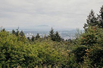 View of Portland city from afar, with lots of trees in the foreground