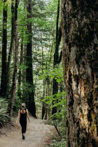 A girl walks on a path among tall leafy trees in Forest Park, Portland