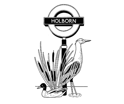 Illustration for Holborn